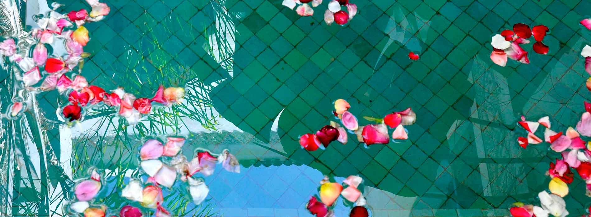 Riad Aguaviva, Marrakech. Rose petals at the pool.
